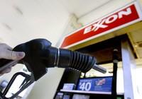 Exxon Mobil. Исключение из правил