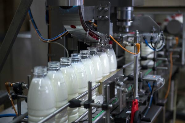 Белоруссия хочет продавать России молоко за доллары