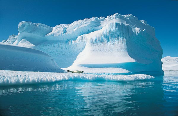 Россия готова подать заявку на акваторию Северного Ледовитого океана