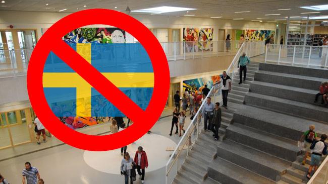 Европейская аномалия: в Швеции запретили флаг Швеции