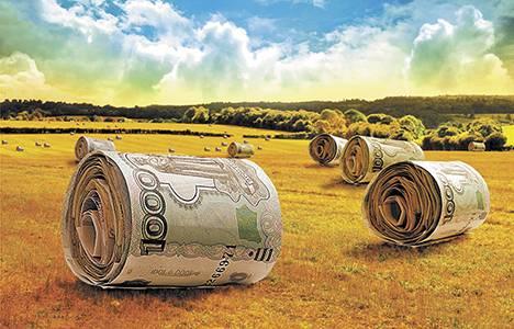 Аграриев намеренно душат, чтобы мы не смогли отказаться от иностранного капитала