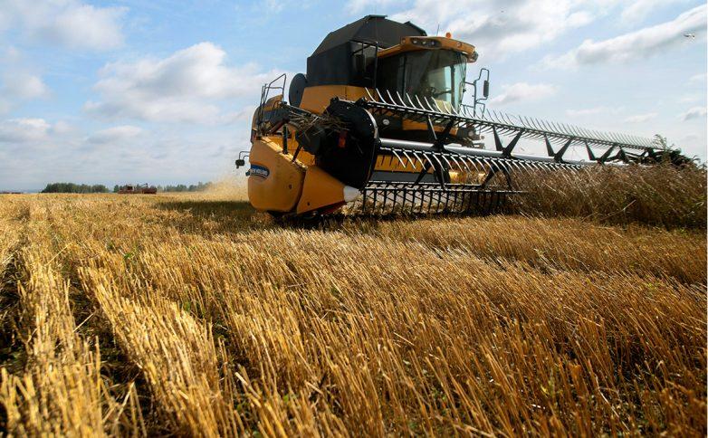 Наш ответ на санкции. Как российская пшеница разоряет американских фермеров