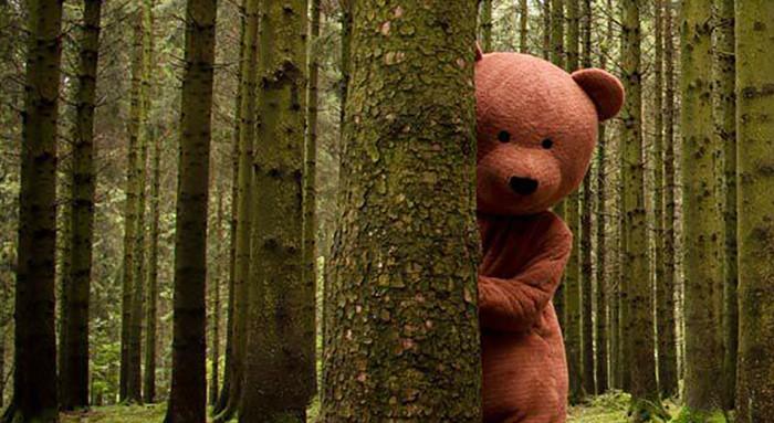 Медведь выглядывает из леса