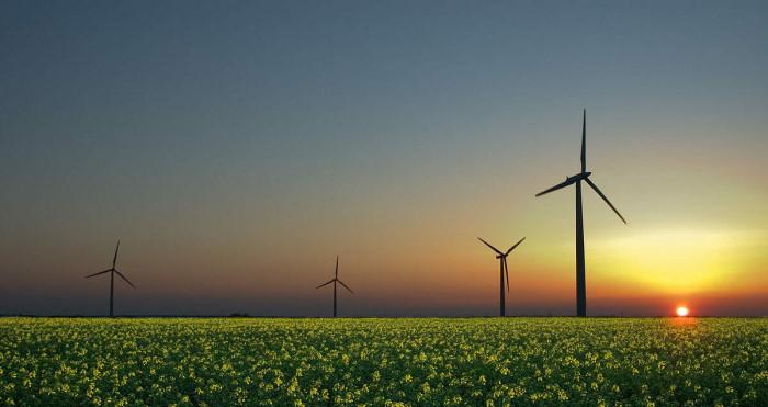 Зеленая энергетика и её обратная сторона