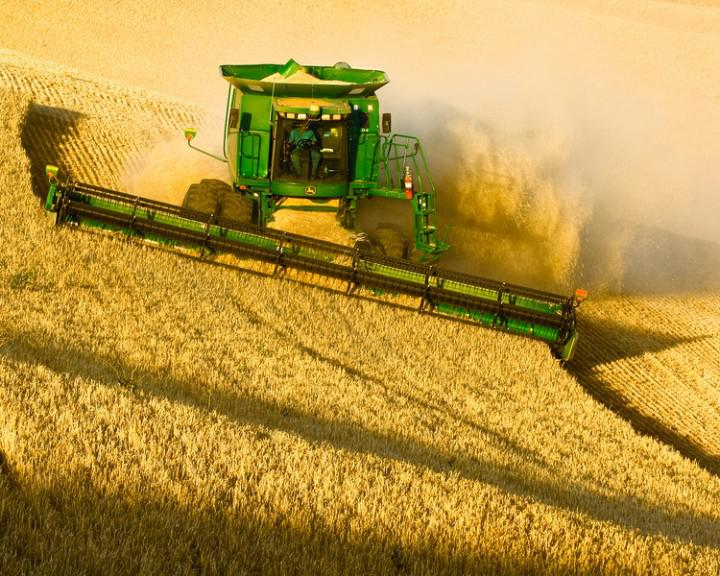 Крым начал экспортировать зерновые в Саудовскую Аравию и на Кипр