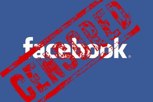 Борьба с Новороссией перекинулась в Фейсбук