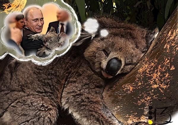 Владимир Путин и коала. Итоги G20