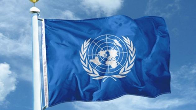 ООН: Украина пытает и казнит мирных граждан