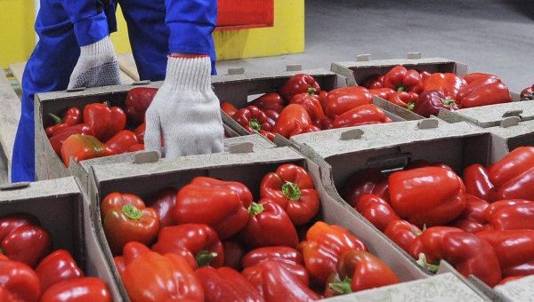 В Россию не пустили двести тонн овощей из Белоруссии и масло с Украины