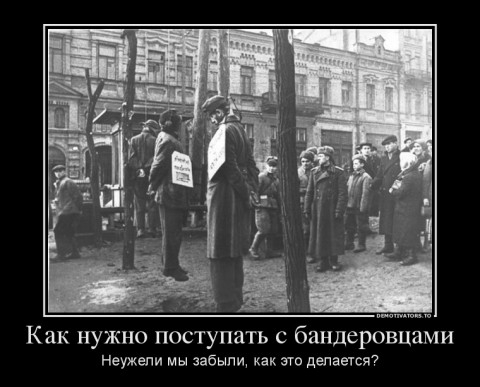 СДОХ БАНДЕРА