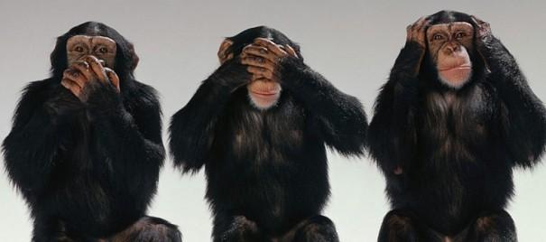 Три обезьяны Ринкевича: миллиардные убытки Латвии от санкций – российская пропаганда