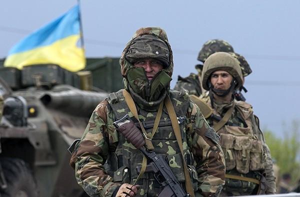 «День скотов» — мнение жителя Донбасса