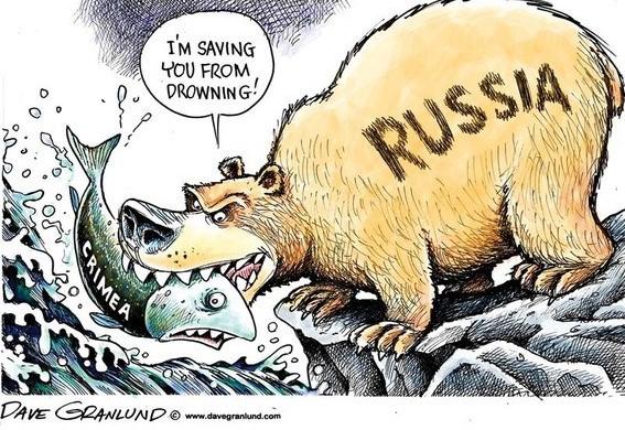 В аризоне медвежонок попался на воровстве сладостей