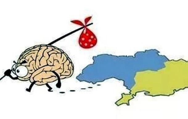 Дуркаина – страна победившая разум
