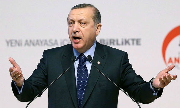 В Германии возбудили дело против политика за цитирование стиха про Эрдогана