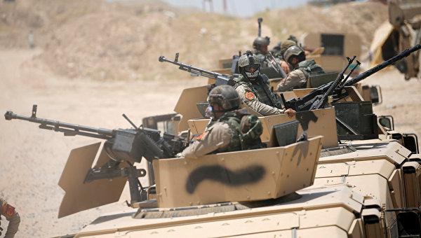 Иракские военные вошли в захваченный ИГ город Эль-Фаллуджа