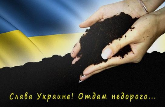 Последнее достояние страны: кому достанутся украинские черноземы?