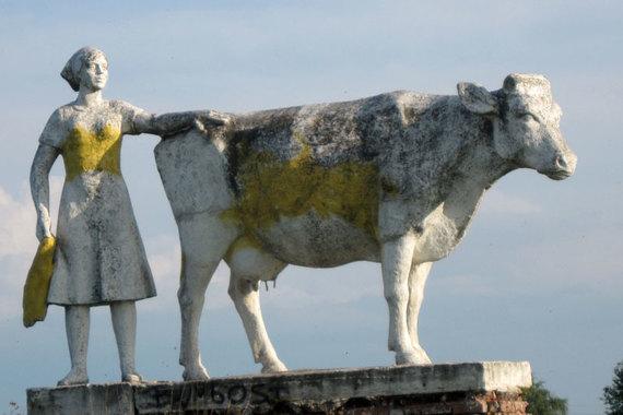 Редкие скоты: Украина попала в мясной цугцванг