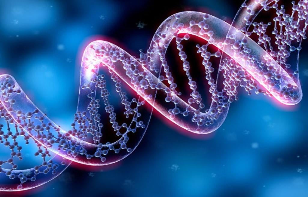 Стелс-гены: США скрывают разработку генетического оружия
