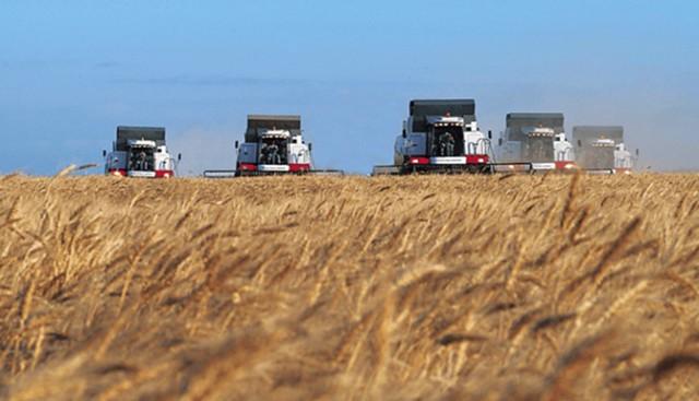 Россия побьет рекорд СССР по урожаю зерна